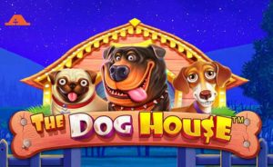 Dog-House-casino